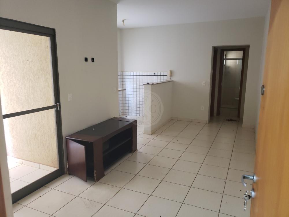 Apartamento 1 dormitório para locação no Nova Aliança