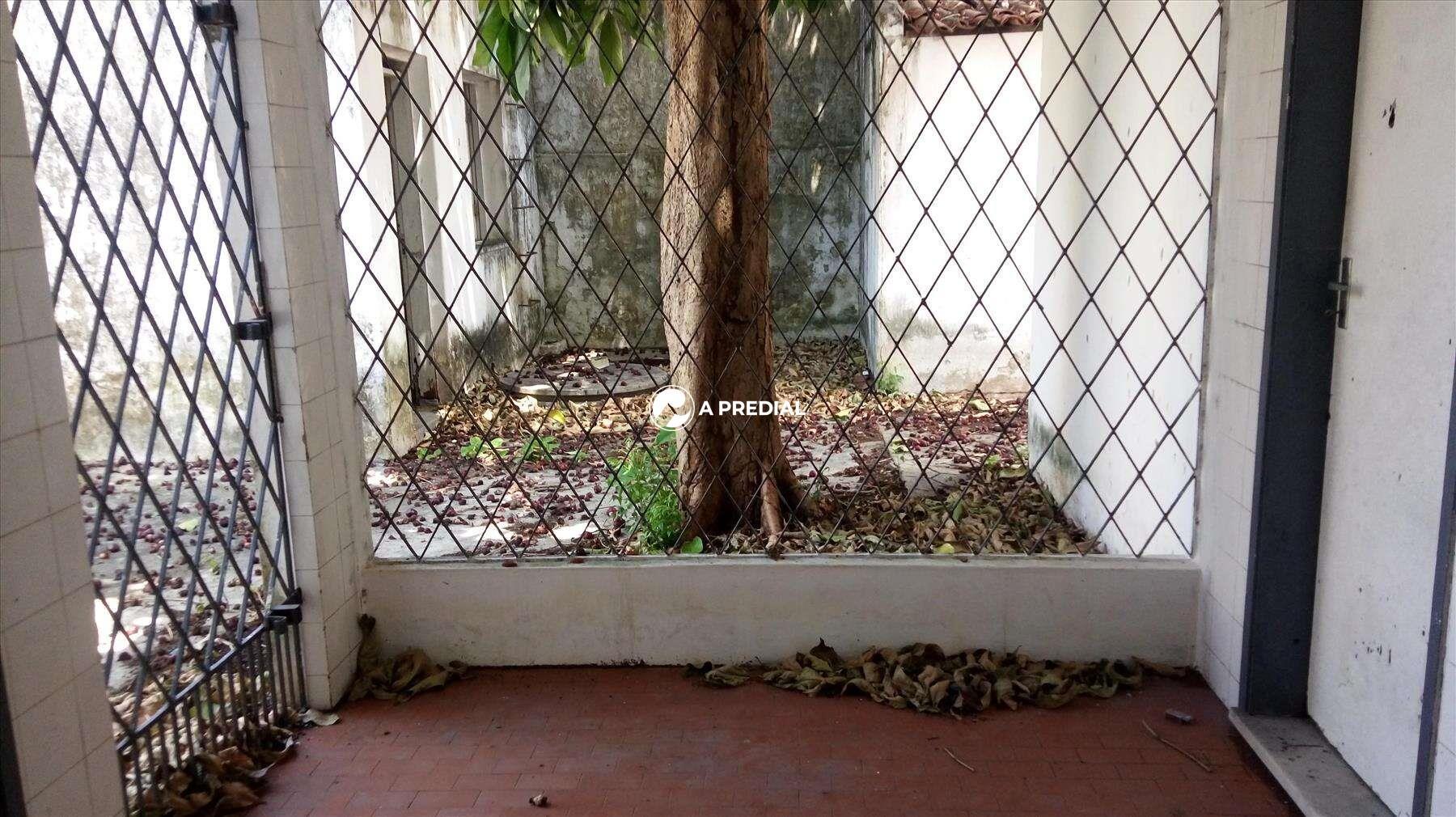 Casa para aluguel no Dionisio Torres: